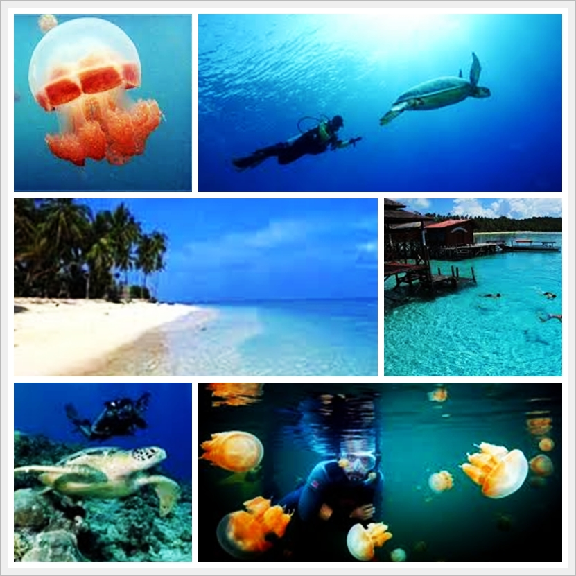 DERAWAN  7 DAYS 6 NIGHTS